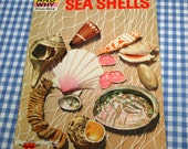 the how and why wonder book of sea shells, vintage 1972 children's nonfiction book