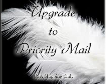 Upgrade Shipping to Priority Mail for infant and toddler wings within the USA