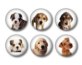 Dog pinback button badges or fridge magnets, fridge magnet set