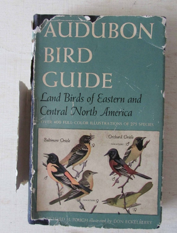 Vintage Book Audubon Bird Guide Land Birds of Eastern and Central North America