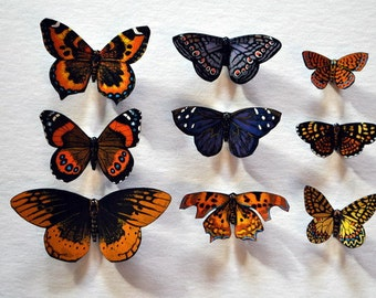 Butterfly Magnets Set of 9 Insects Refrigerator Magnets, Handmade, Multi Color, Gifts,