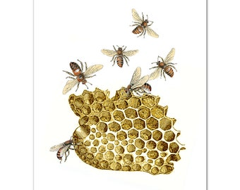 Art Print, Illustration, BEES and Honeycomb - Wall decor,Fine Art Prints, Art Poster. Save the Bees