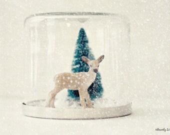 deer, Christmas, winter, snow, fine art photography