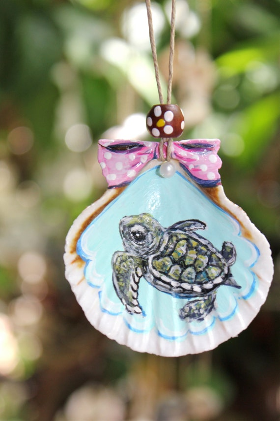 Sale Baby Sea Turtle Hand Painted Collectable Sea Shell