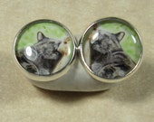 Nap Time Cat Stud Earrings