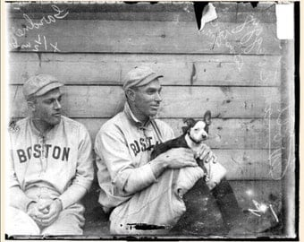 Vintage Boston Terriers and Boston  Red Sox  Print Decoupaged On Wood
