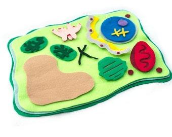 Plant Cell Model Felt Set - Science Toy -  Homeschool Biology - Educational Flannel Board
