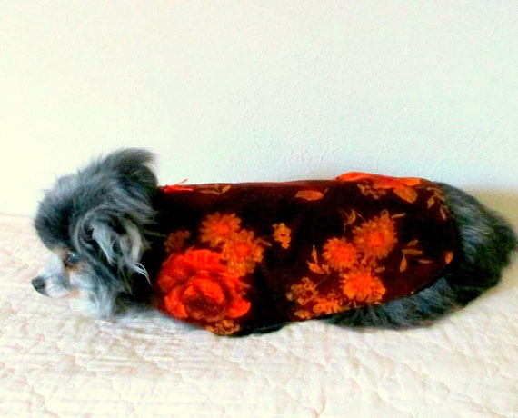 Corduroy  Cat's or Small Dogs' Coat OOAK Ready to Ship Pet Clothing - Dark Burgundy with Orange Roses Yorkie