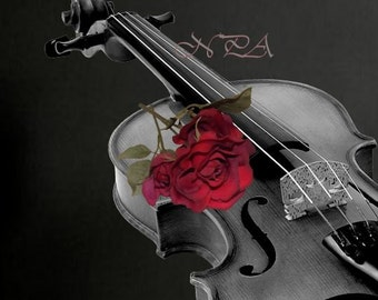 Musical Instrument Photography Black and White Violin with Red Rose Matted Picture Art Print A507