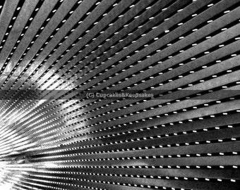 "Black and White ""Tunnel"" Fine Art Photograph"