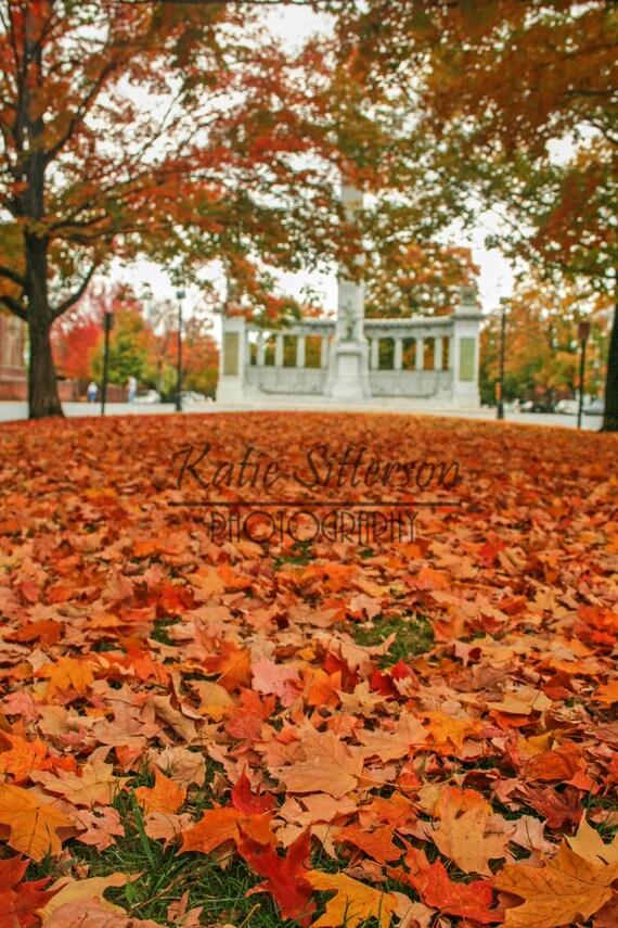 Fall Foliage Monument Avenue In Richmond Va Fall By