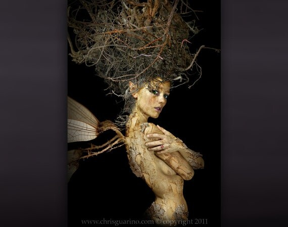The Root Fairy