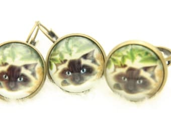 Earrings and ring persan cat
