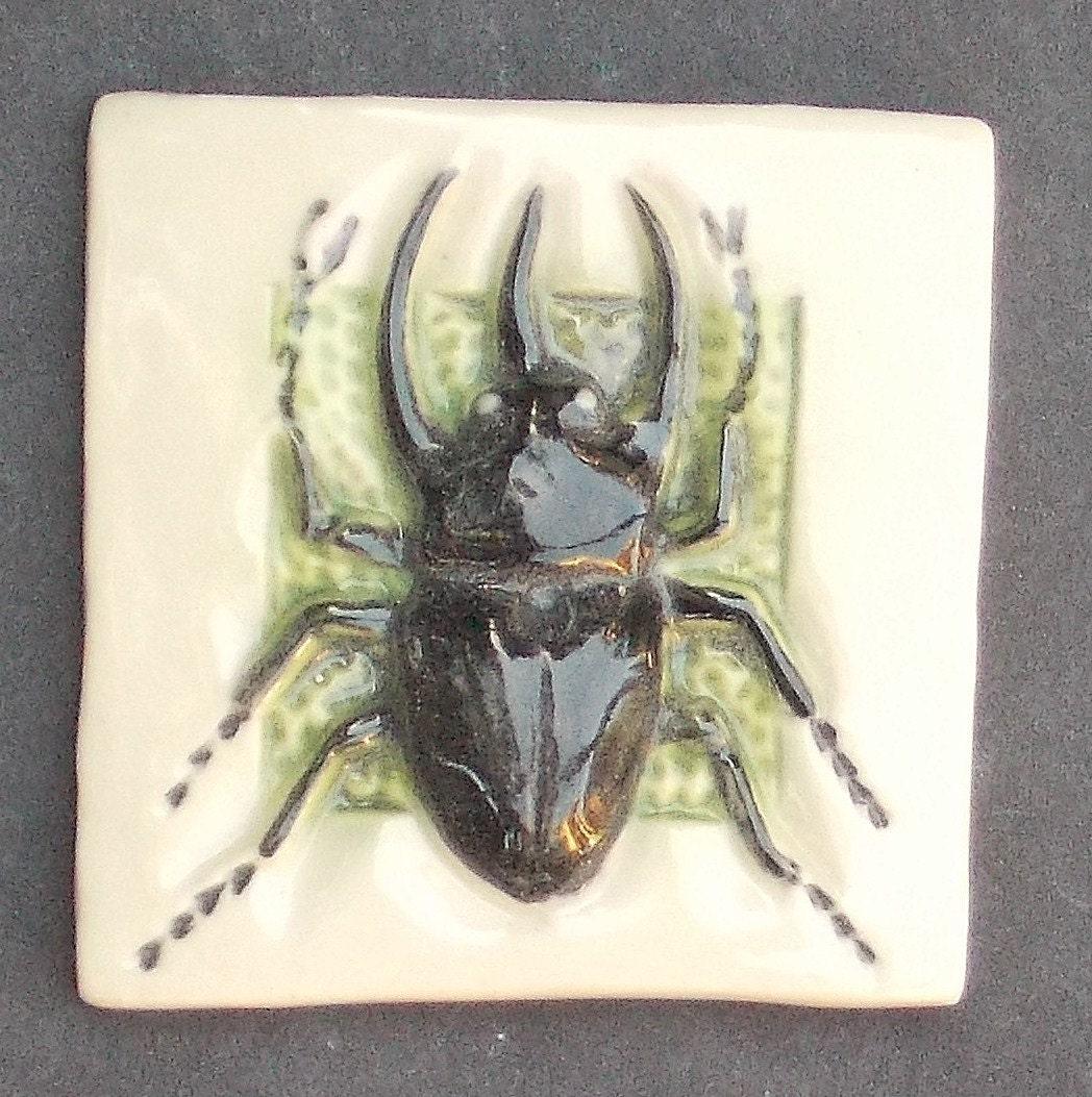 Rhinoceros Beetle Hand Made Tile - photo#36