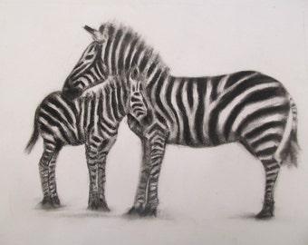 Charcoal Zebras