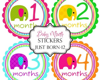 Girls Bright Elephants, Monthly Baby Stickers Make Great Baby Shower Gifts..Bonus Just Born Sticker Included