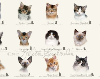 Cat Breed Panel - Elizabeth's Studio 3808-CREAM (sold by the panel)
