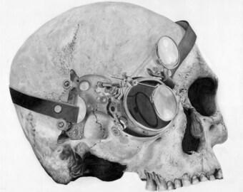 Steampunk Skull Print