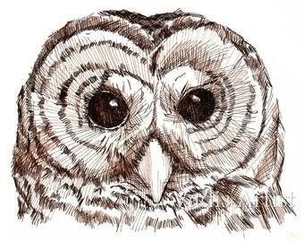 Pen and Ink Owl Drawing Art Print 8X10 Nursery Owl Art Sepia Art Print
