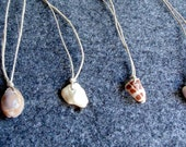 Wish Necklace, natural shell on hemp