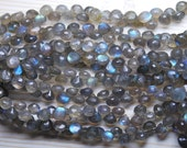 8 Inch Strand,Finest Quality,Blue Fashy Labradorite Micro Faceted Onion,6-7mm aprx
