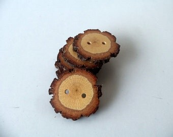 Wood Buttons - Branch Buttons - Slim Handmade Wood Buttons-6 Large Handmade Blackjack Tree buttons with the bark-1 3/5 inches diameter.