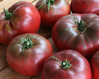 Cherokee Purple Tomato Seeds - Organic Heirloom - Purple and Dark Red - 25 Seeds