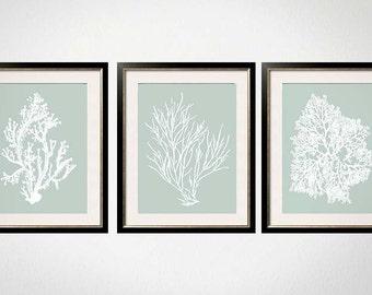 Sage Wall Art, Palladian Blue Art, Sea Foam Green, Coral Print Set, Palladian Blue Wall Art, Bathroom Wall Art, Bedroom Wall Art, Set of 3