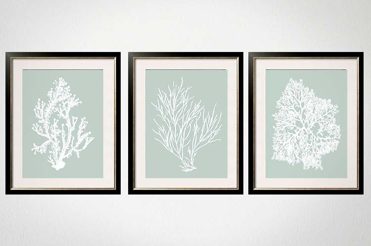 Sage Wall Art Palladian Blue Art Sea Foam Green Coral Print Set