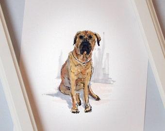 Personalised Pet Illustration