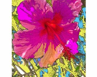 Fushsia by James Miley, original photographic art 16X20 print