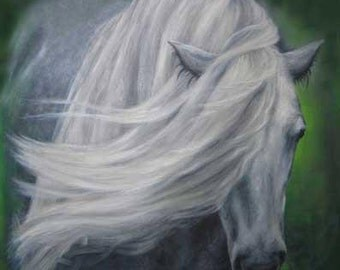 Highland Pony I, L/E Giclee Print, medium size