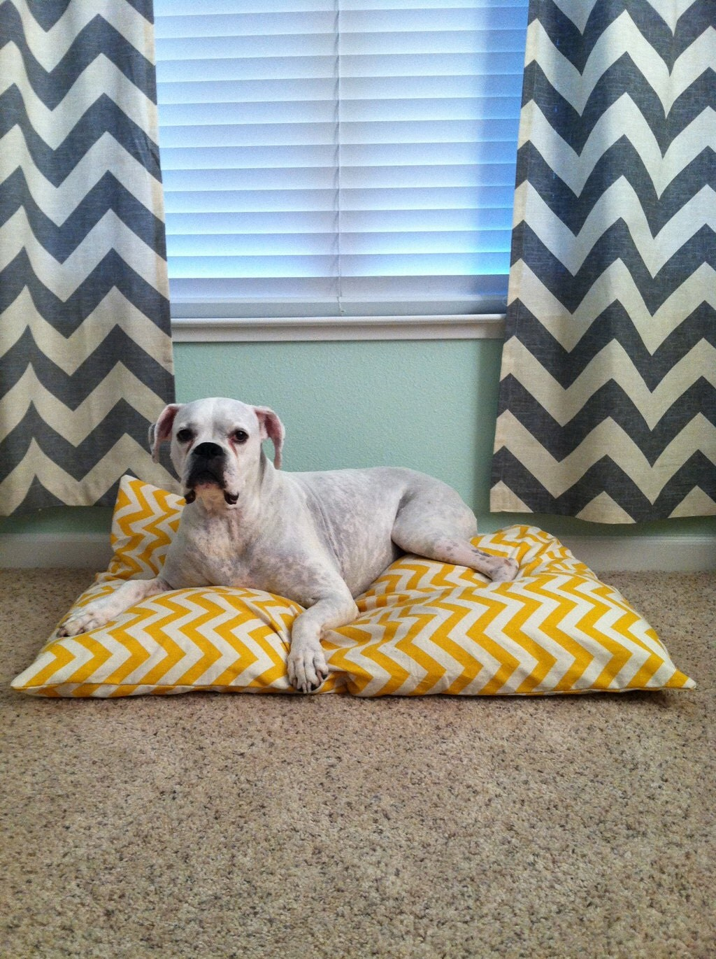 Yellow And Natural Chevron Dog Bed Cover