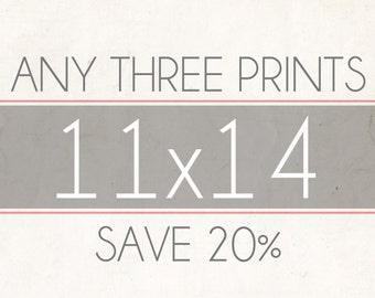 Fine Art Photo Prints, Choose Any Three 11x14 Photographs, Wall Decor