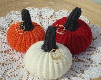 Fall pumpkins Thanksgiving decor rustic pumpkins fall harvest crochet pumpkins Thanksgiving table centerpieces Halloween pumpkins set 10