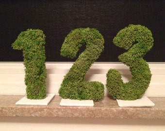 Moss covered numbers for wedding receptions, etc...