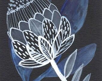 PRINT- Flora, artichoke, Black white and blue, Flowers on black - 5x7
