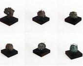 Chomps - Set of 6