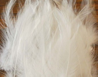 Cruelty Free Rooster Feathers - Wedding White
