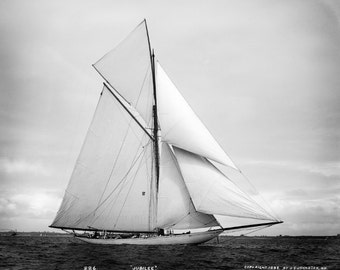 Jubilee Racing Cutter Yacht 1893 Photo Reproduction 8x10 Sailboat at America's Cup Race