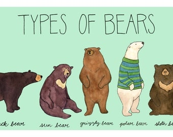 categories pictures bears