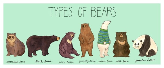 Items similar to Types of Bears print,10x24 with mint green ...