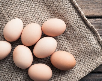Large Wall Art — Brown Eggs Still Life, Egg Picture, Food Photography, Kitchen Decor, Dining Room Decor, Oversized Art, Farmers Market