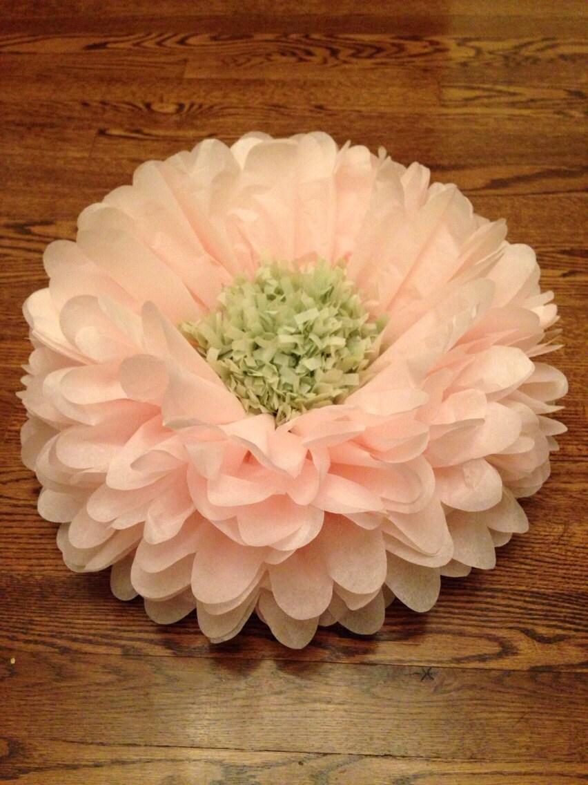 Set Of 6 Giants Tissue Paper Flowers Pom Poms 2 In 1 Birthday