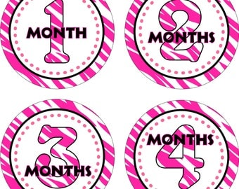 Baby Month Stickers Baby Monthly Stickers Girl Monthly Shirt Stickers Baby Shower Gift Photo Prop Baby Milestone Sticker  Zebra