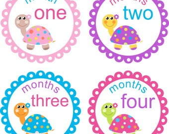 Baby Month Stickers Baby Monthly Stickers Girl Monthly Shirt Stickers Scallop Multi Turtle Shower Gift Photo Prop Baby Milestone Sticker