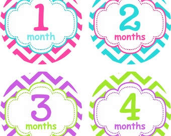 Monthly Baby Girl Stickers, Milestone Stickers, Baby Month Stickers, Monthly Bodysuit Sticker, Monthly Stickers Pink, Purple, Blue, Green