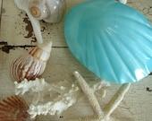 Gorgeous Vintage Robin's Egg Blue Clam Shell Trinket Box Salt and Pepper S & P Shakers Napco Kitsch Coastal / epsteam ivteam tvat wlv v2team