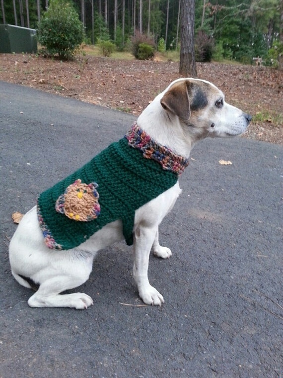 Crochet Knit Dog Sweater Dog Vest with Owl by GoneLoopyCrochet