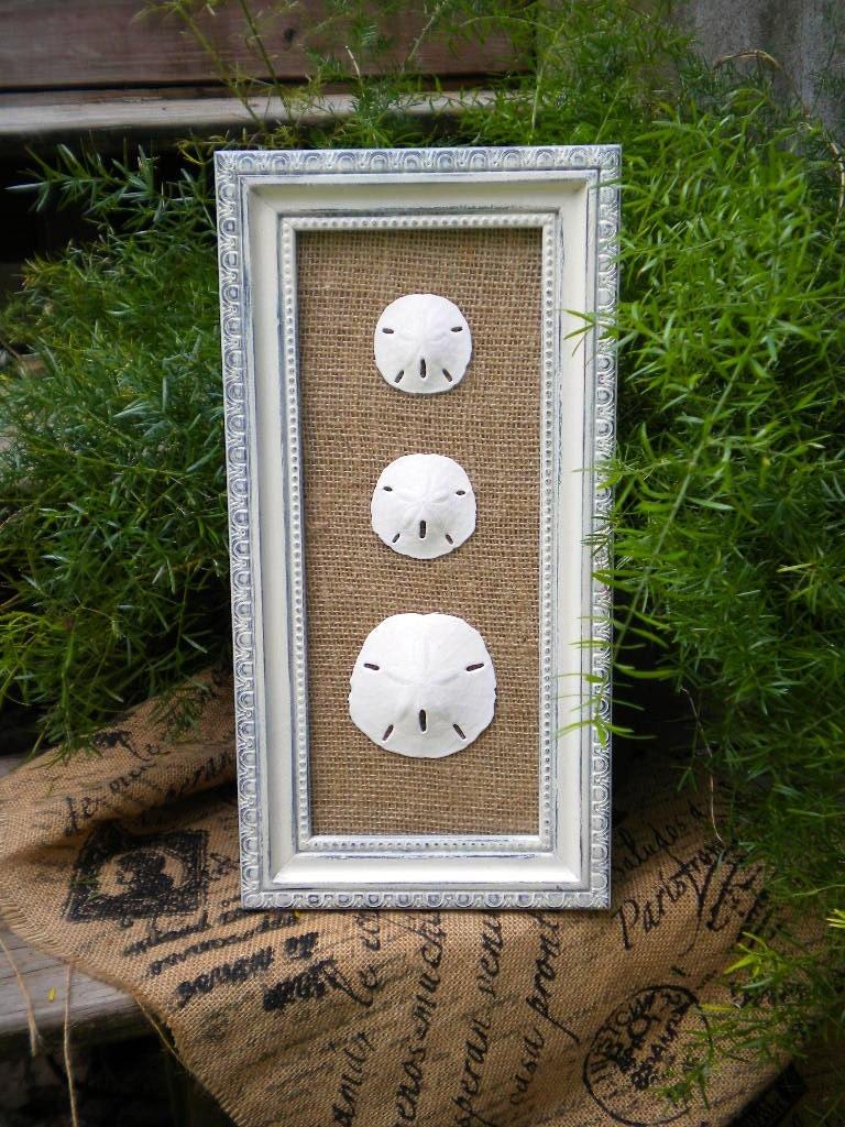 Cottage Chic Sand Dollar Wall Art Sea Shell Art Sea Shells